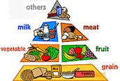 Food primide