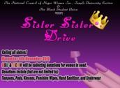 BSU and NCNW's Sister Sister Drive