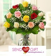 Different Colors Roses - Send My Gift