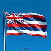 Hawaii Link