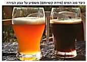 נושא העבודה- בירה