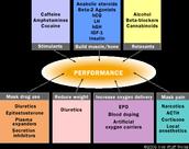 Performance Chart.