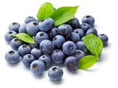 Love My Little Blueberries!