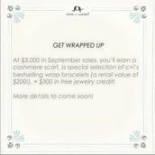 Merchandiser Incentive - $3,000
