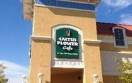 Cactus Flower Cafe