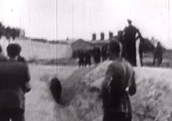 Videos of the executions