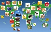 Foods And Animals That Were Traded