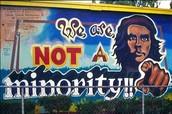 Not A Minority