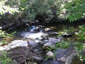 Ogden River