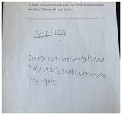 Student C-Diagnostic Assessment
