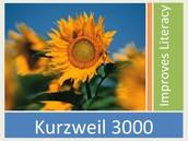 What is Kurzweil 3000?