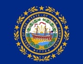 The New Hampshire Colony Flag