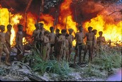 Lord of the Flies Movie (1990)