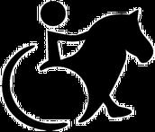EQUINOTERAPIA : potenciando la igualdad