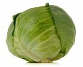 healthy cabbage!