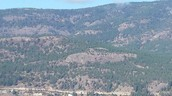 views on top of the crown lookout. wow!!