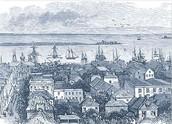 The Plymouth Pilgrims