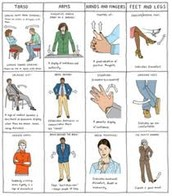 Frequently used  Body Language and Gestures