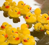 Please support the upcoming PTO Duck Race Fundraiser