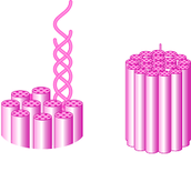 Molecular Level