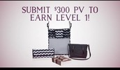 Level 1 - $300