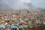 The Garbage Dump