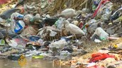 Polluted canal in Egypt