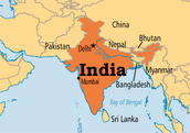 What natural resources are present in India