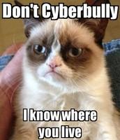 Grumpy Cat HATES It!