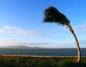 General info on wind