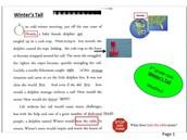 3rd Grade Examples