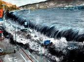 #tsunami