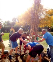 Planting a tree for the library
