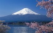 Mt.Fuji!