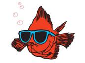 Chuy's Fish