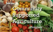 Thinking about signing up for a CSA but want to learn more about the idea before you commit?