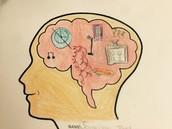 Brain hemisphere.