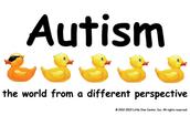 Social contexts of autism