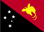 Papua New Guinea's flag