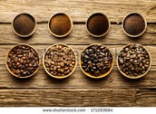 different beans