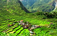 Banuae Rice Terraces