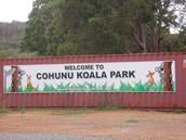 Parque Koala de Cohunu