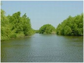 Colardo River