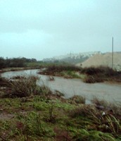River beit arif