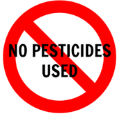 Don't use Pesticides