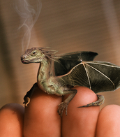 This picture is of a real dragon.
