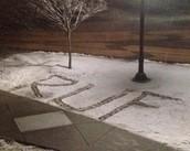 Snowy RUF