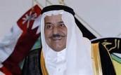 MUHAMMAD BIN NAYIF bin Abd al-Aziz Al Saud
