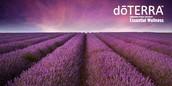 Welcome new doTERRA Members!