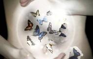 Regaliamo farfalle